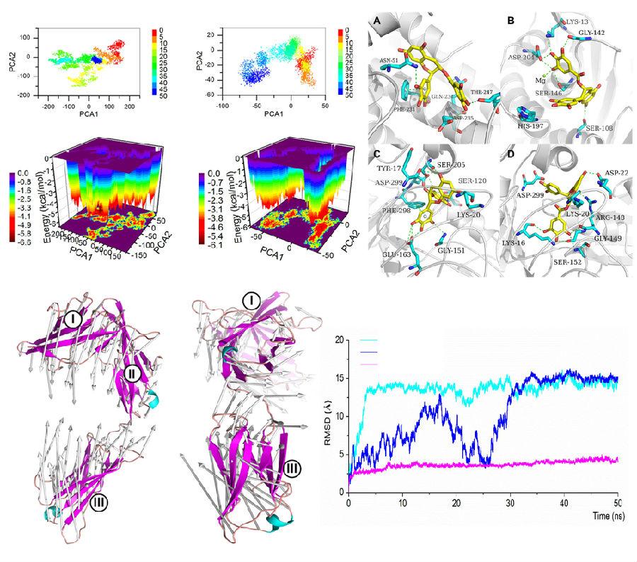 分子动力学模拟