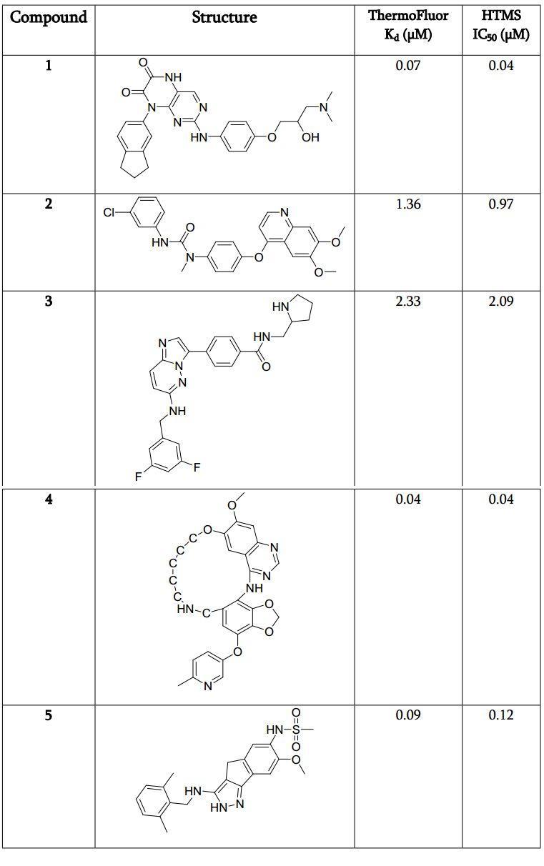 应用高通量虚拟筛选加速先导化合物开发(一):BTK研究案例