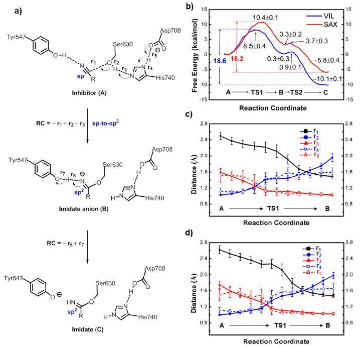 量子药物化学案例1-QM计算揭示降血糖药物共价结合靶点机制