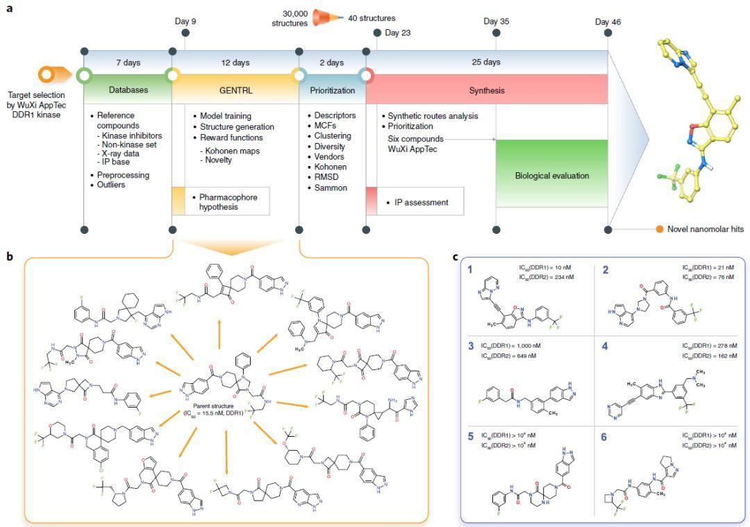 Nature Biotechnology   46天!深度学习加速DDR1激酶抑制剂研发
