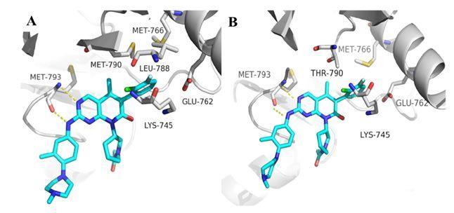 JMC结合自由能计算应用于靶向EGFR新型抑制剂设计