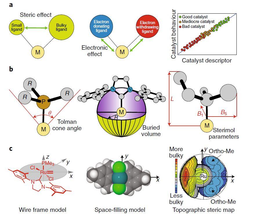 Nature Chemistry | 开源的计算机辅助蛋白酶催化剂设计工具