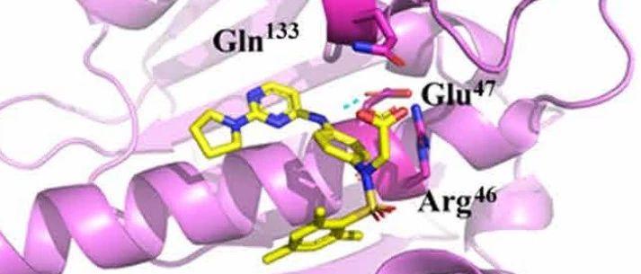Science Advances | 经典!从分子动力学到虚拟筛选发现PPI小分子抑制剂