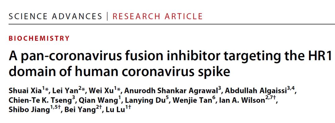 Science Advances | 广谱抗冠状病毒融合多肽抑制剂的发现