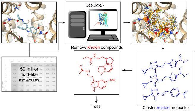 Nature | 从1.5亿分子库中虚拟筛选发现调节昼夜节律的褪黑素受体激动剂