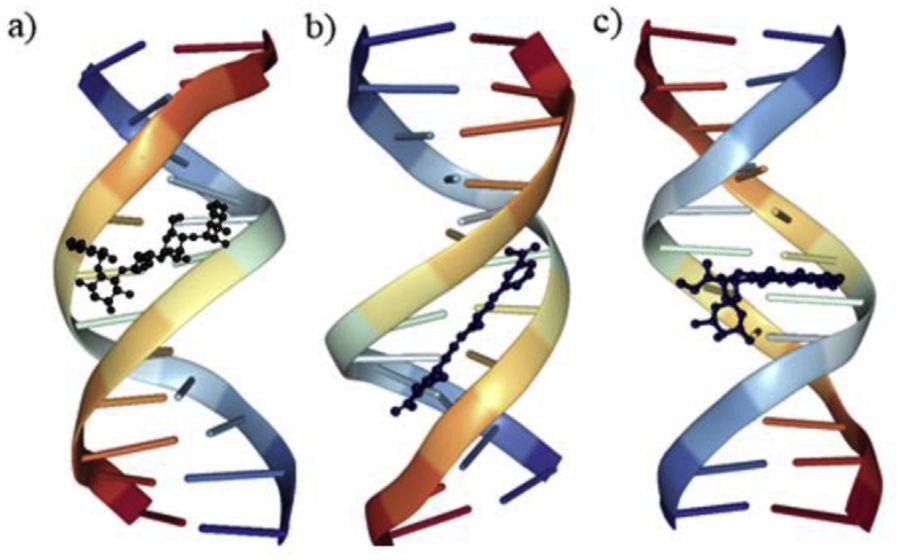 EJMC | 小分子与核酸对接方法的现状与挑战