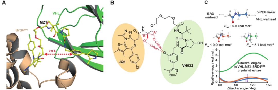 Angew Chem | 计算模拟设计大环PROTAC分子