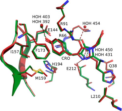 JACS | 分子动力学揭示绿色荧光蛋白mEos4b的发光机制