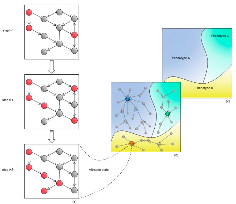 JMC   基于网络的方法在药物研发中的应用