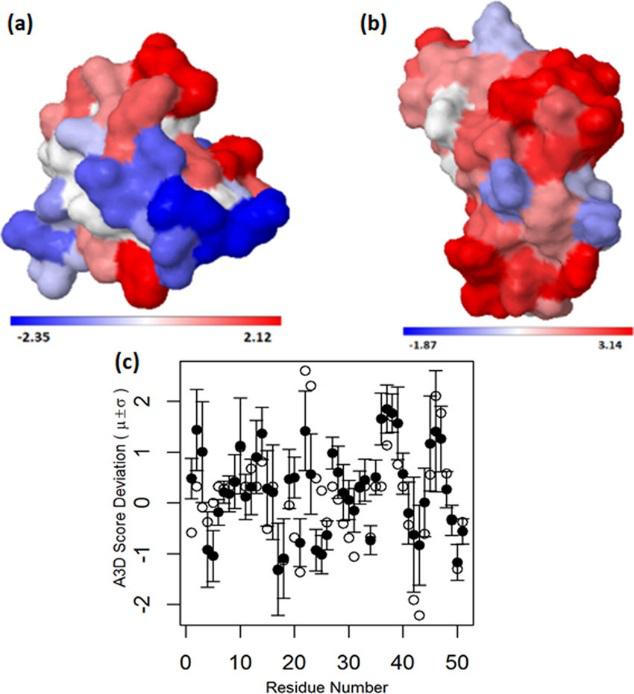 JCIM | 基于结构的胰岛素聚集多肽抑制剂的设计