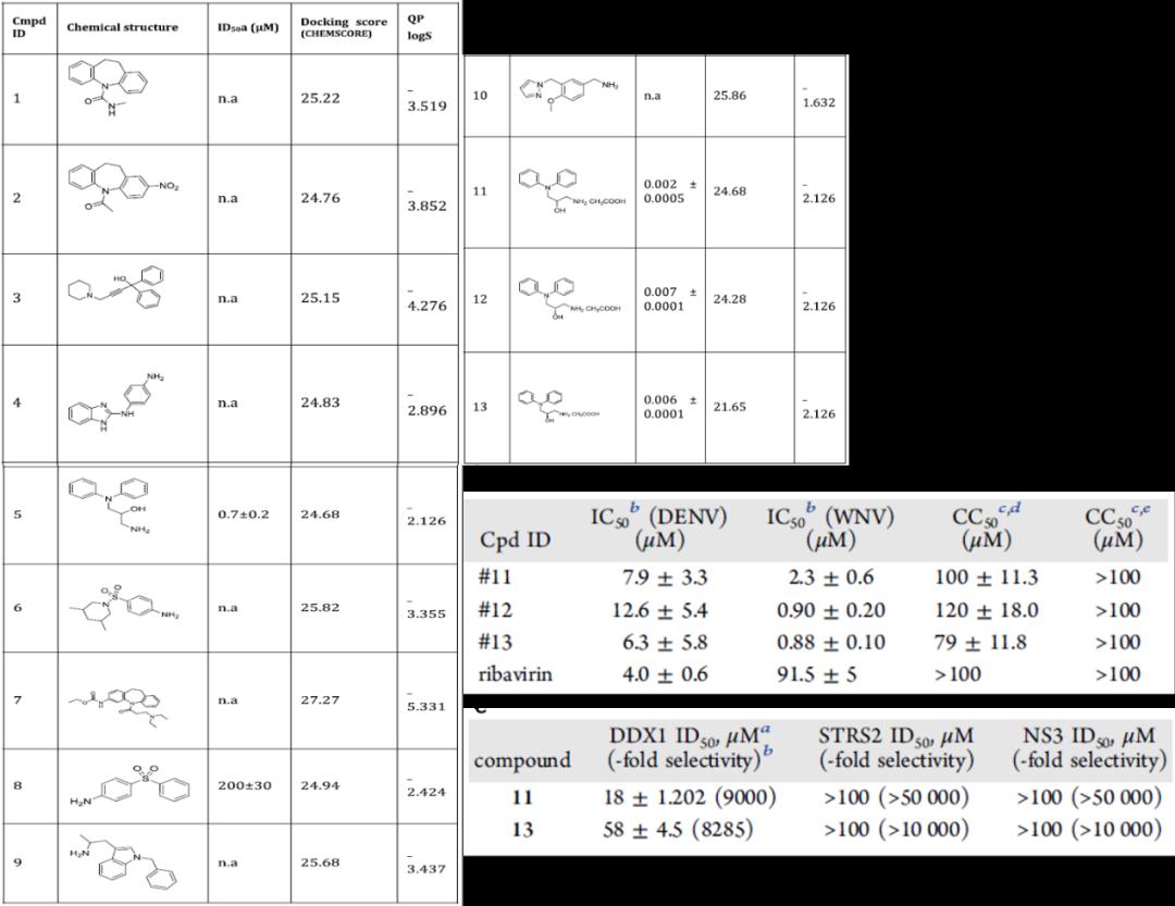 JMC | 靶向DDX3X特定结构域的计算策略发现高选择性广谱抗病毒抑制剂