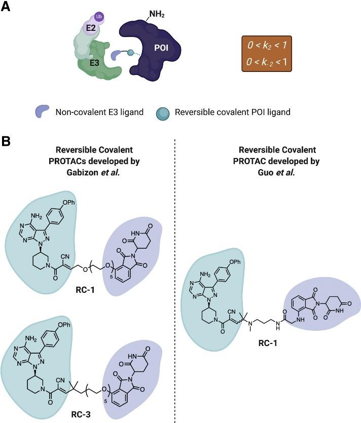 Cell Chemical Biology | 可逆和不可逆共价化学在靶向蛋白降解中的作用