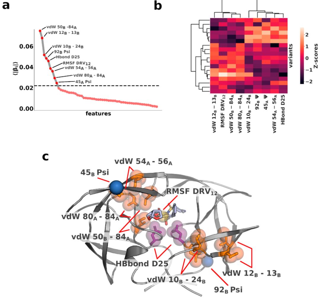 JCTC | 传统分子动力学模拟和新型机器学习相结合揭示耐药性复杂机制