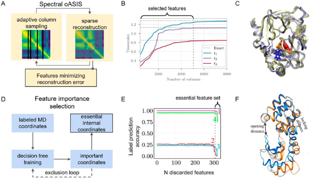 JACS Au 机器学习时代下研究蛋白功能动力学的马尔可夫状态模型
