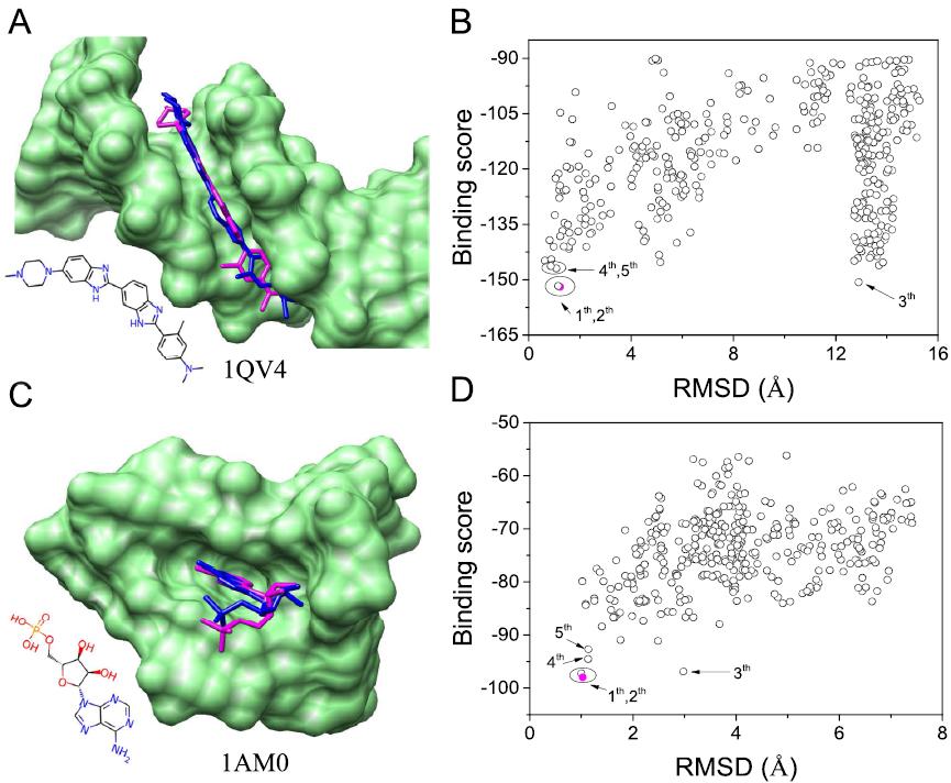 JCIM | NLDock:一种用于复合物建模的快速核酸-配体对接算法
